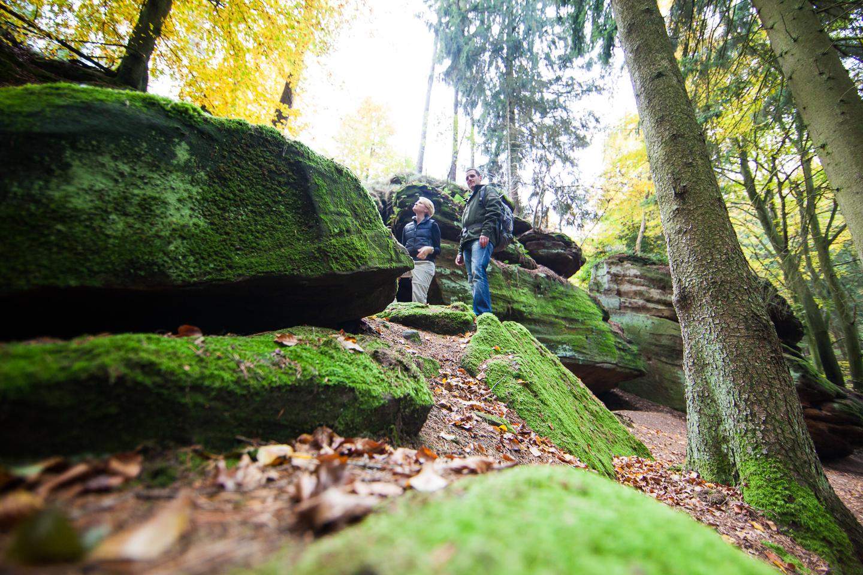 Herbstwandern Kirkeler Tafeltour