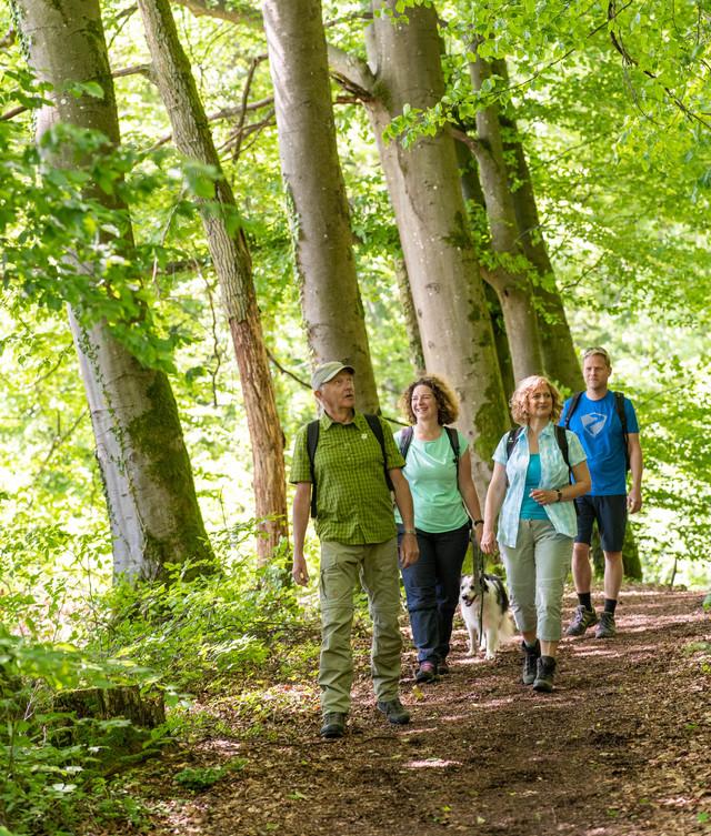 Wandern in der Biosphäre Bliesgau