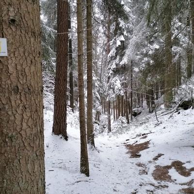 Schlossbergtour bei Schnee