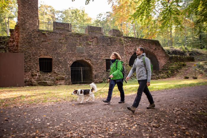 Wandern auf der Schlossbergtour in Homburg