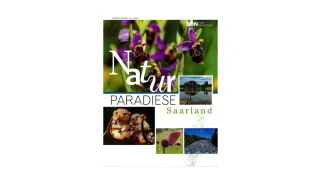 Naturparadise Saarland