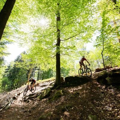 Mountainbiker im Bliesgau, PUR