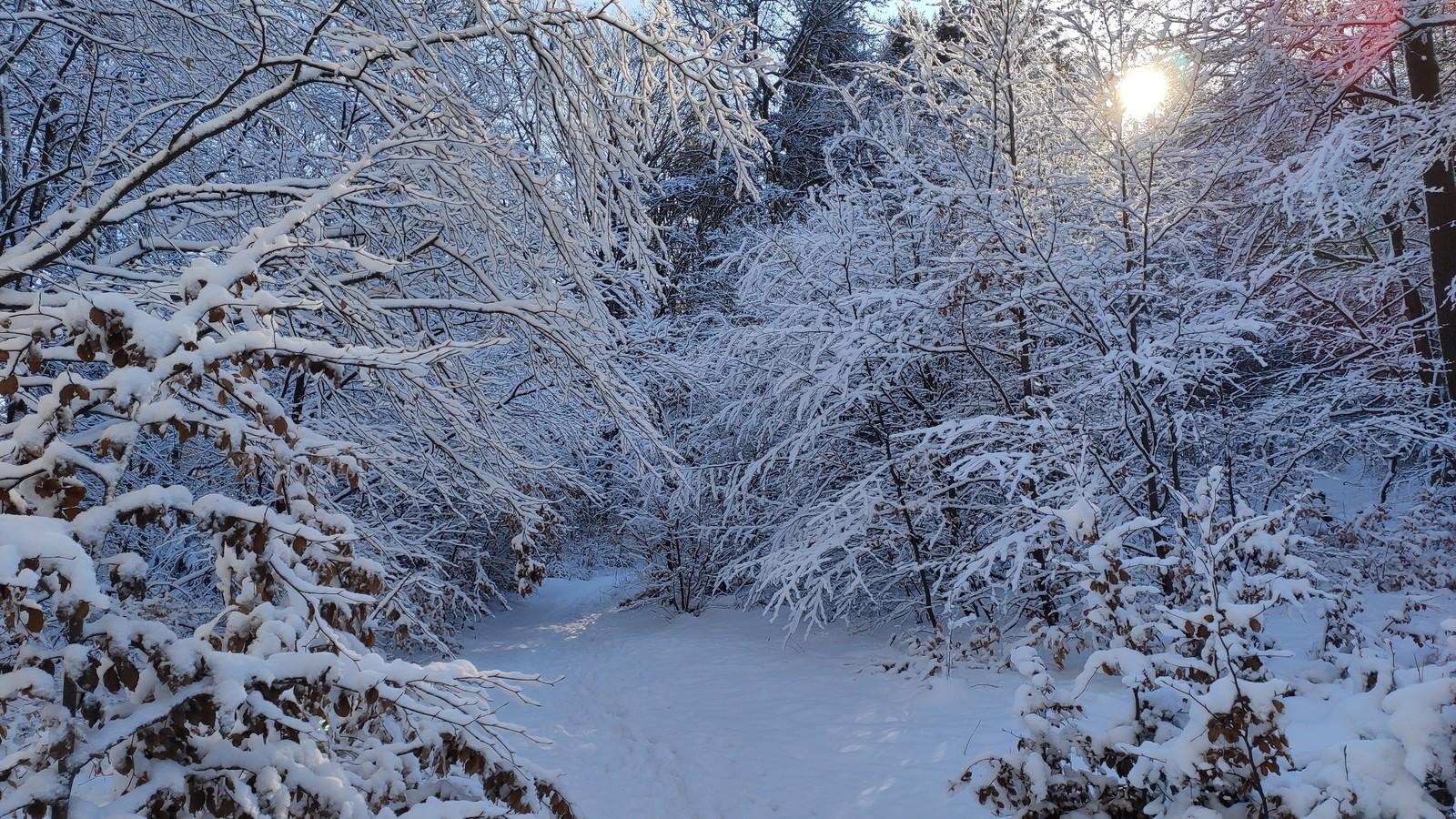 Kirkeler Tafeltour bei Schnee