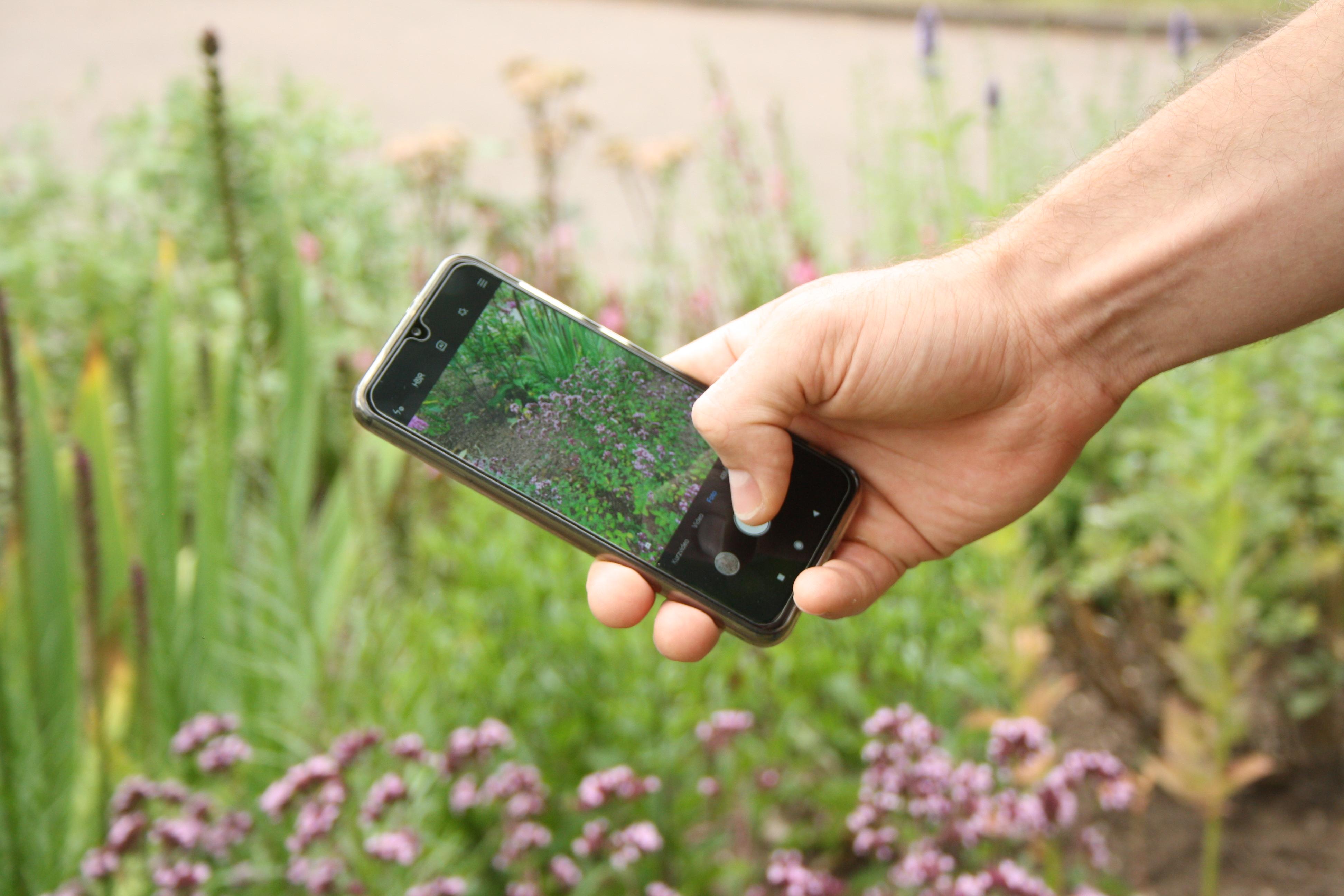 Mit Kamera und Handy durch die Biosphäre Bliesgau - Fotoworkshop für Einsteiger
