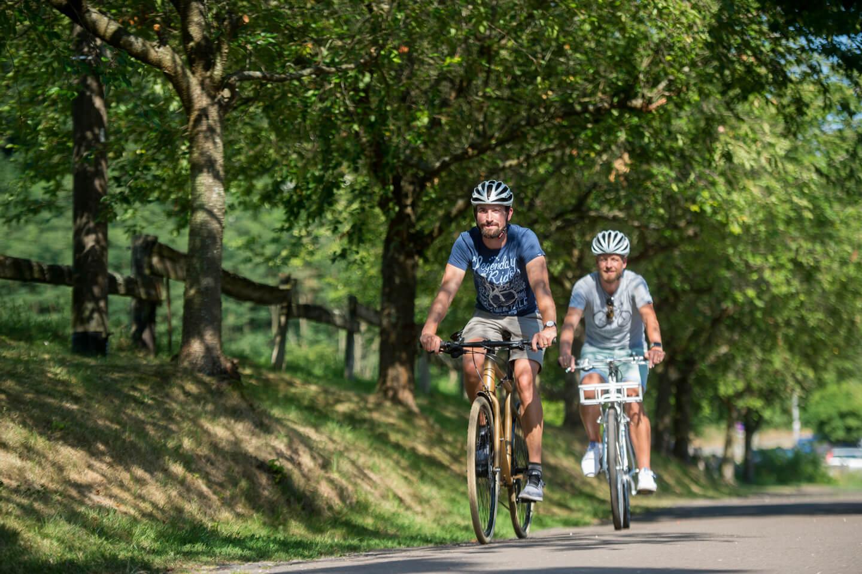 Radfahren am Würzbacher Weiher
