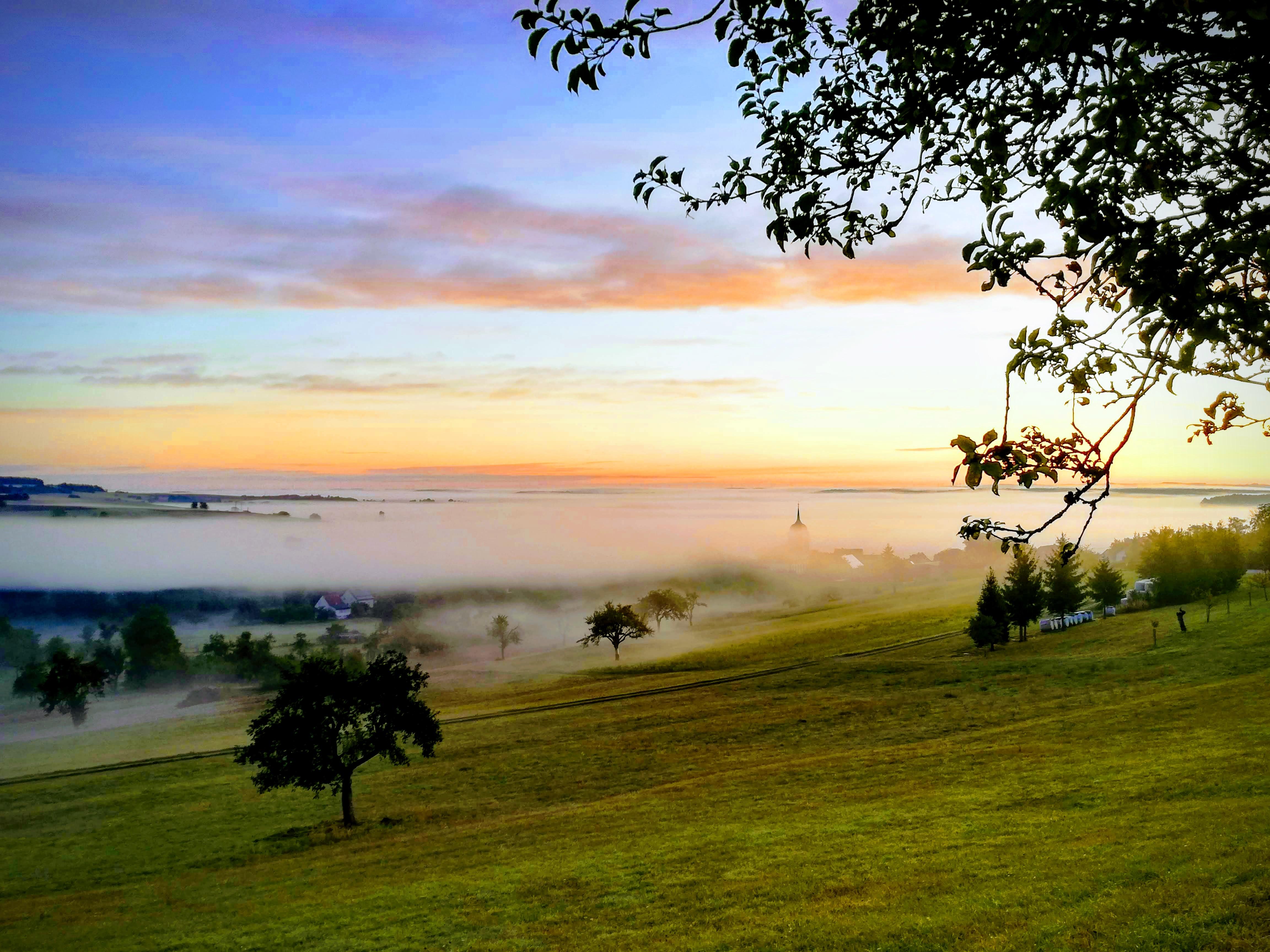 Morgenstimmung in Medelsheim