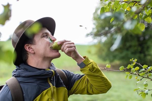 Wanderer isst Birne