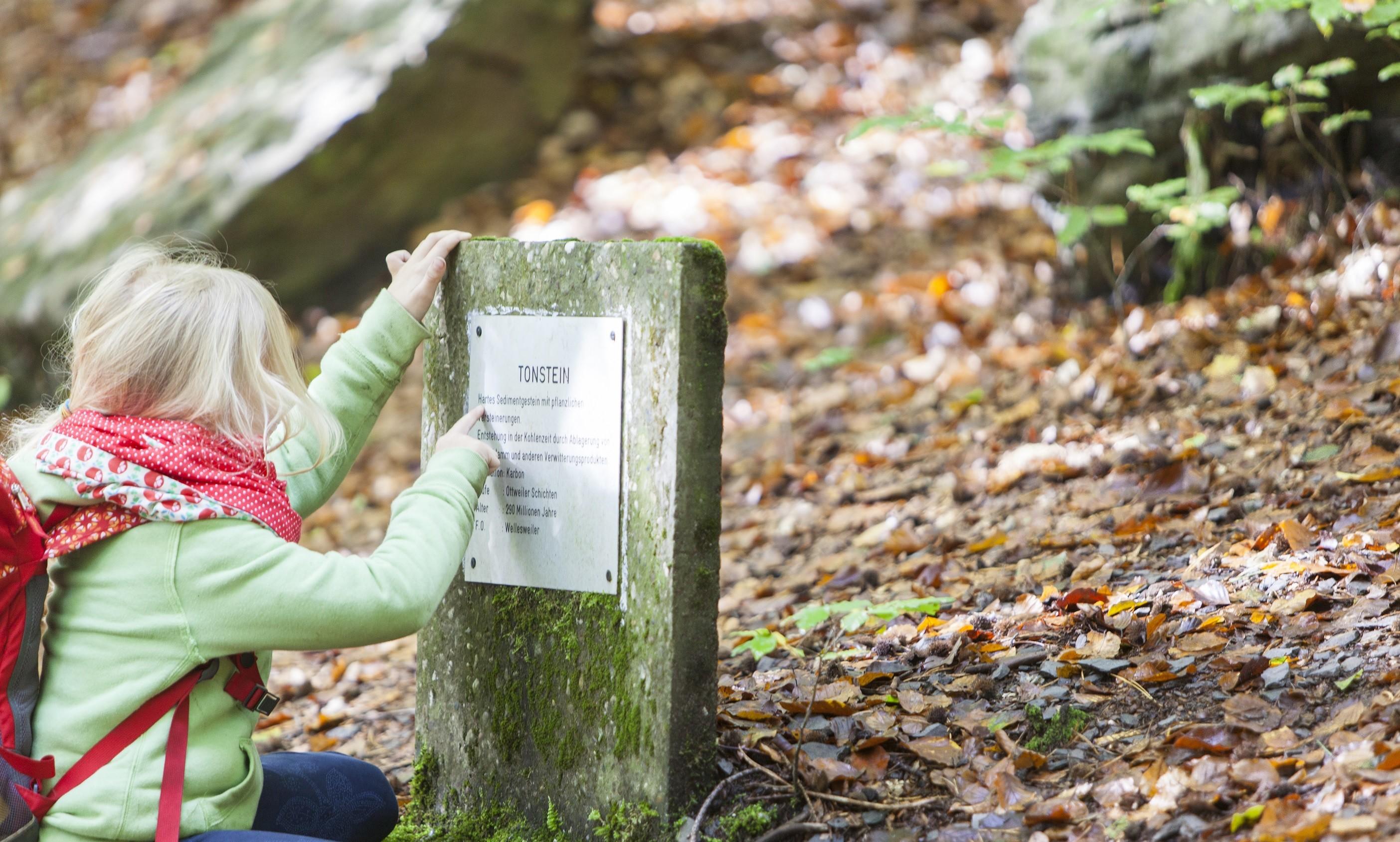 Kleine Wanderin im Kirkeler Wald