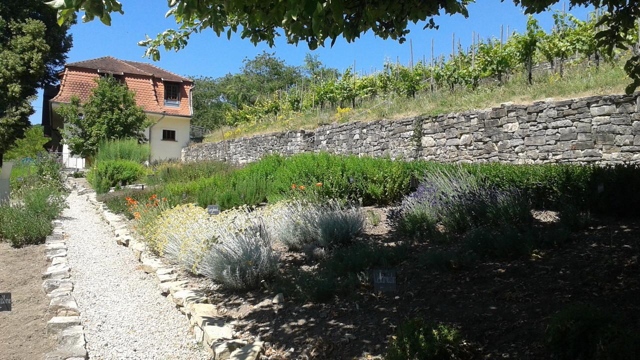 Kräutergarten des Haus Lochfelds