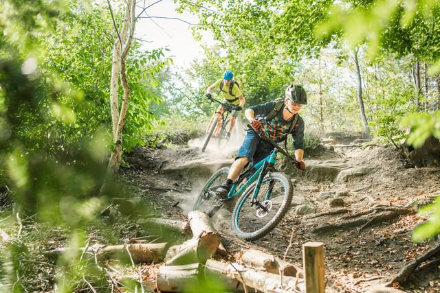 Mountainbike Pur 2020 4