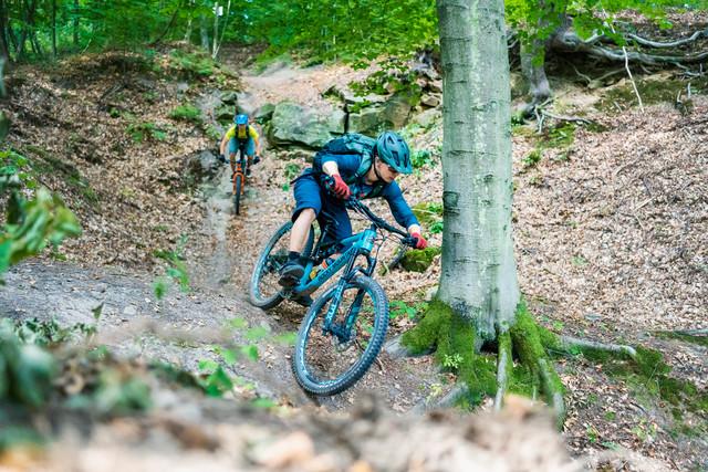 Mountainbike Pur 2020 2