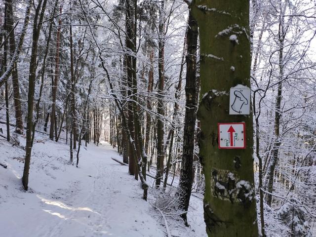Kirkel Tafeltour Winter 2