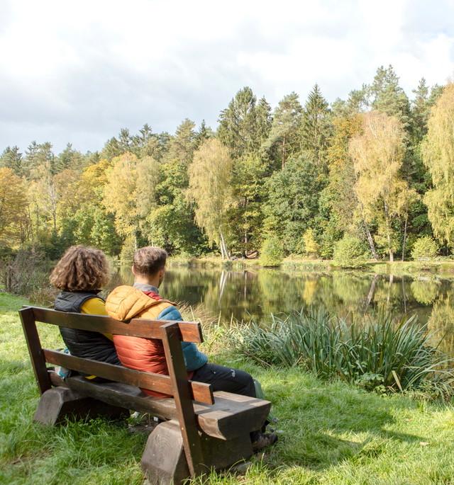Wandern auf der Schlossbergtour in Homburg am Kirrberger Fischweiher
