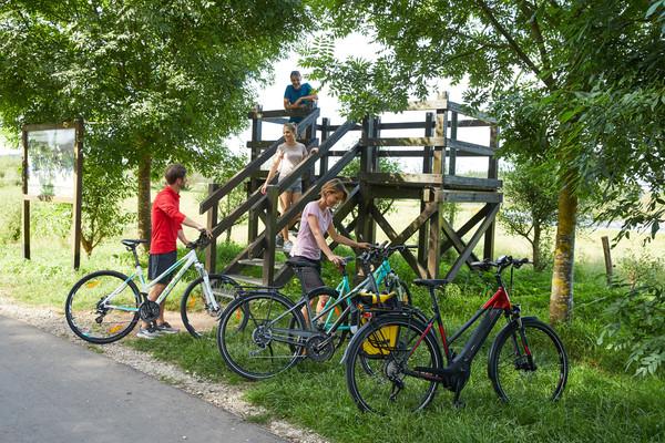 Radfahrer am Biotop Beeden
